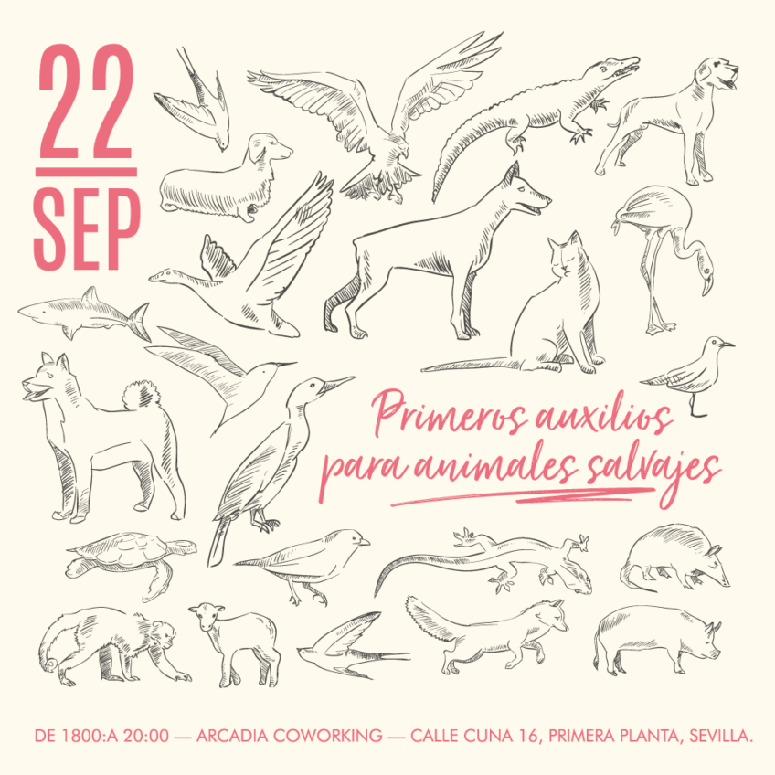 CHARLA «PRIMEROS AUXILIOS PARA ANIMALES SALVAJES»