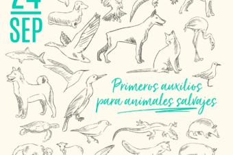 """NUEVA FECHA CHARLA """"PRIMEROS AUXILIOS PARA ANIMALES SALVAJE"""": NOS VEMOS EN GRANADA!"""