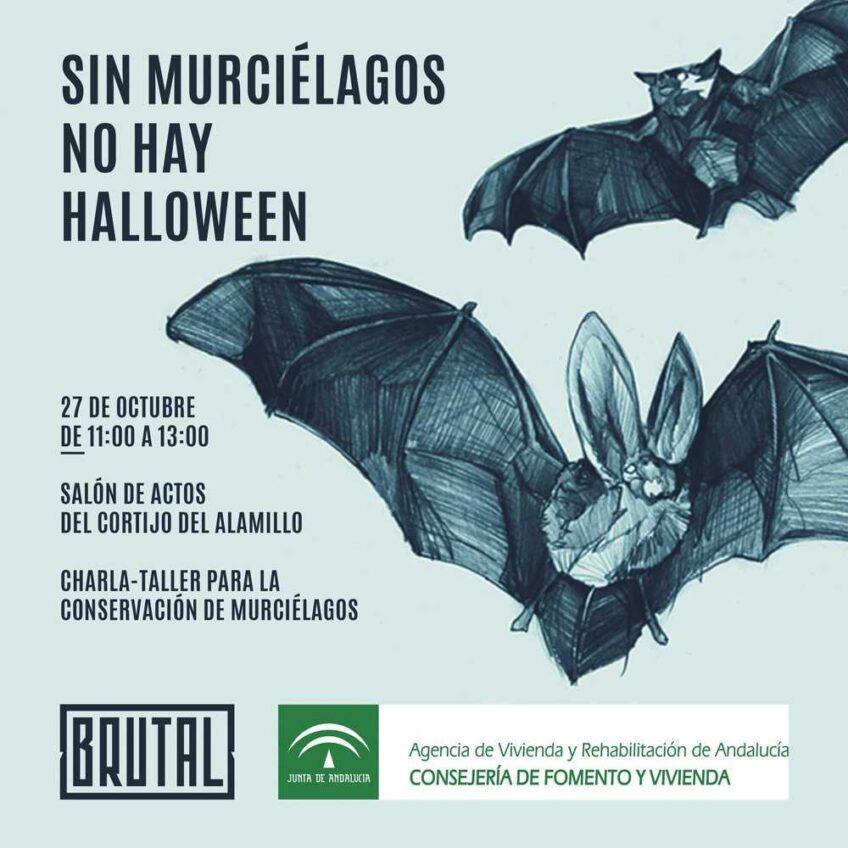 CHARLA – TALLER SOBRE CONSERVACIÓN DE MURCIÉLAGOS