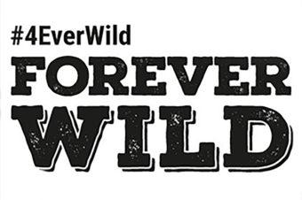 #4EVERWILD