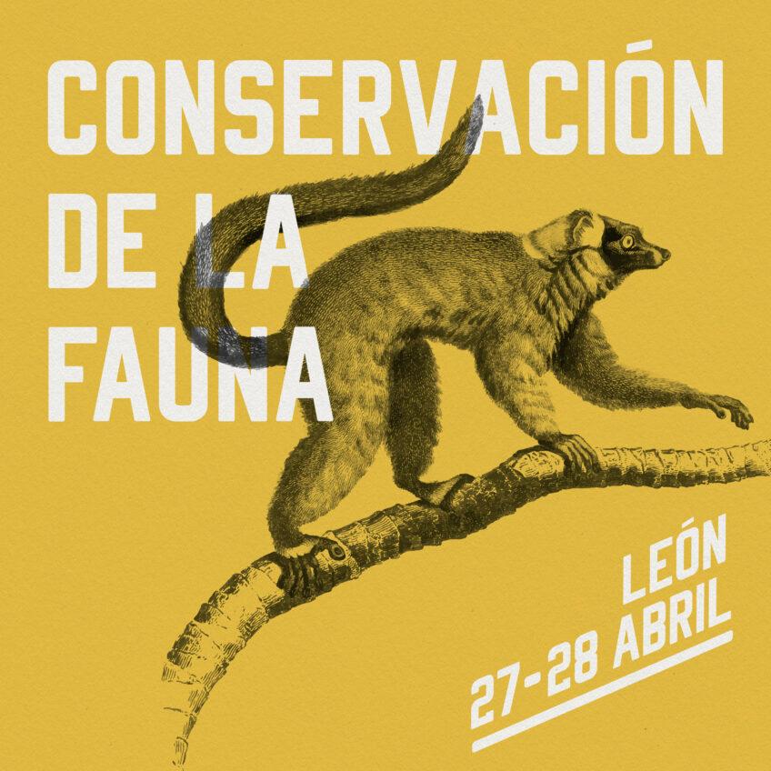 WORKSHOP 9: CONSERVACIÓN DE LA FAUNA EN LEÓN