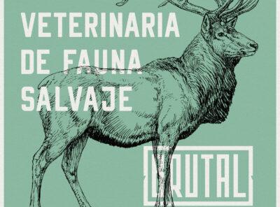 WORKSHOP 11: VETERINARIA DE FAUNA SALVAJE – SEVILLA