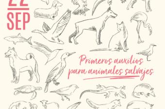 """CHARLA """"PRIMEROS AUXILIOS PARA ANIMALES SALVAJES"""""""
