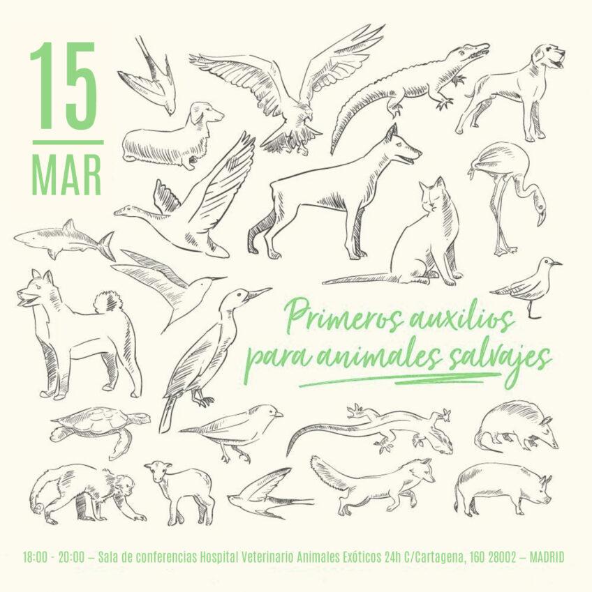 CHARLA PRIMEROS AUXILIOS PARA ANIMALES SALVAJES