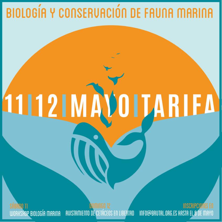 WORKSHOP BIOLOGÍA Y CONSERVACIÓN DE FAUNA MARINA