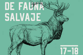 WORKSHOP 11: VETERINARIA DE FAUNA SALVAJE