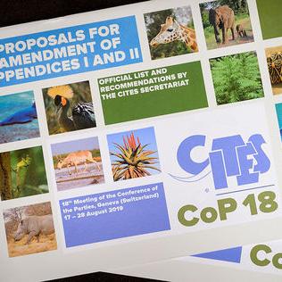 CITES-COP18: CONFERENCIA MUNDIAL SOBRE LA VIDA SILVESTRE DE 2019