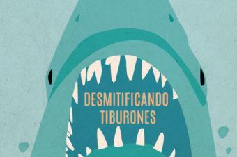 DESMITIFICANDO TIBURONES – post de ESTÍBALIZ PARRAS
