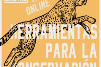 WORKSHOP 17 (ACTUALIZACIÓN): HERRAMIENTAS PARA LA CONSERVACIÓN ONLINE – ANTES LA CORUÑA