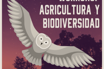 WORKSHOP 16: AGRICULTURA Y BIODIVERSIDAD – ONLINE (ANTES GRANADA)