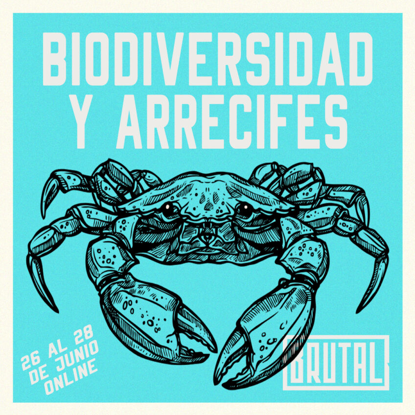 WORKSHOP 19: BIODIVERSIDAD Y ARRECIFES