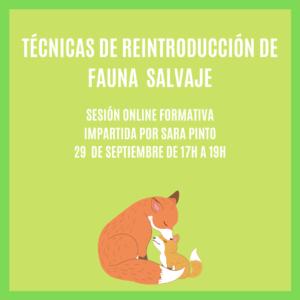 """""""TÉCNICAS DE REINTRODUCCIÓN"""" – Sesión Formativa Online"""
