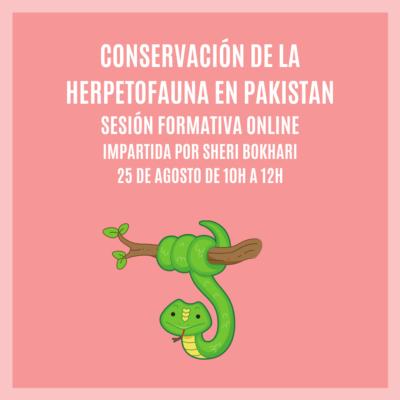 """""""CONSERVACIÓN DE LA HERPETOFAUNA EN PAKISTÁN"""" – Sesión Formativa Online"""