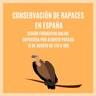 CONSERVACIÓN DE RAPACES EN ESPAÑA – Sesión Formativa Online