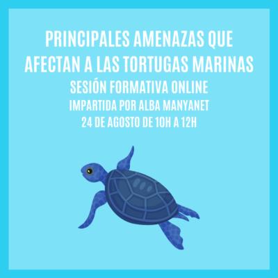 """""""PRINCIPALES AMENAZAS QUE AFECTAN A LAS TORTUGAS MARINAS"""" – Sesión Formativa Online"""