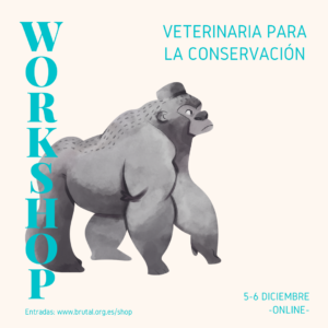 WORKSHOP ONLINE – VETERINARIA PARA LA CONSERVACIÓN