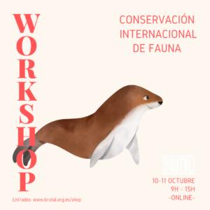 WORKSHOP ONLINE – CONSERVACIÓN INTERNACIONAL DE FAUNA