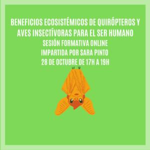 """""""BENEFICIOS DE QUIRÓPTEROS Y AVES INSECTÍVORAS PARA EL SER HUMANO"""" – Sesión Formativa Online"""