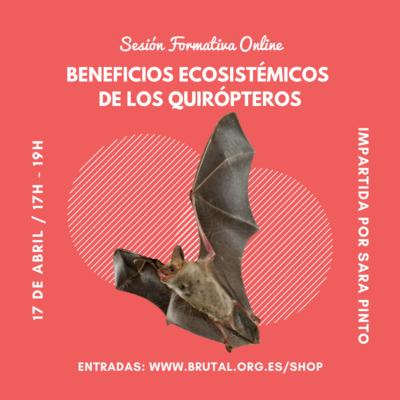 """""""BENEFICIOS ECOSISTÉMICOS DE LOS QUIRÓPTEROS"""" – Sesión Formativa Online"""