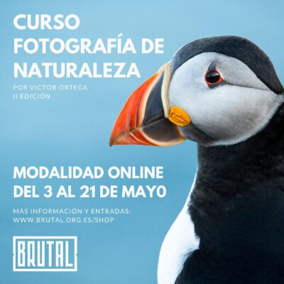 CURSO ONLINE DE FOTOGRAFÍA BRUTAL (II Edición) – Por Víctor Ortega